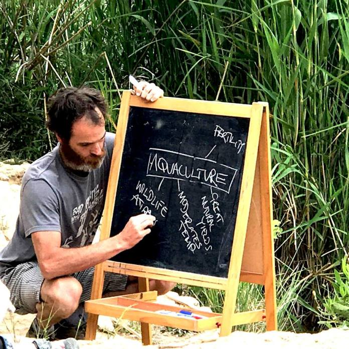 Permaculture - 9